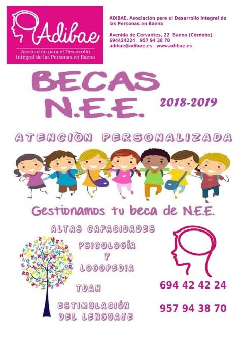 Adibae tramita las becas NEE 2018-2019